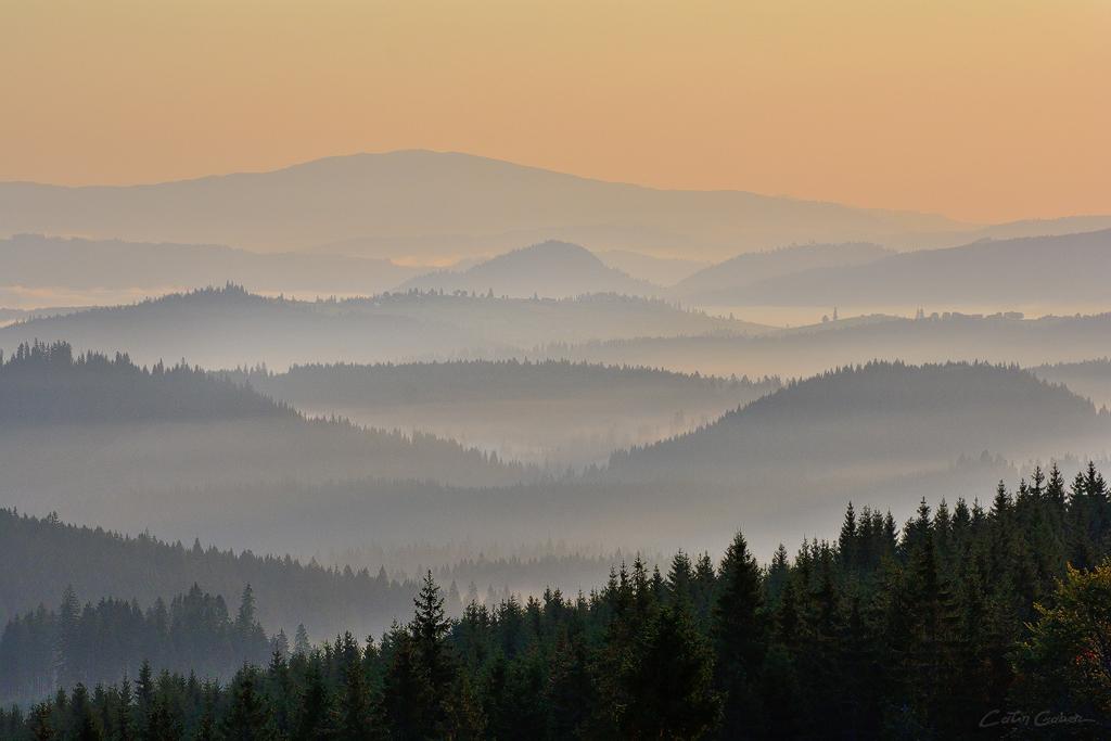 Bucovina hills. Plaiuri bucovinene