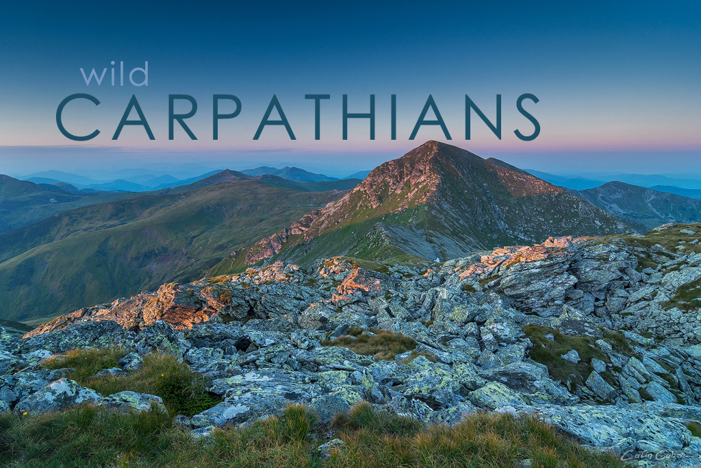 Photography tours in the Carpathians