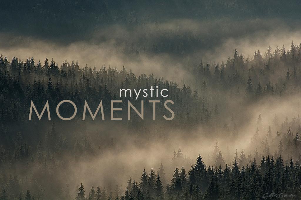 Photo tours in mystic Transylvania