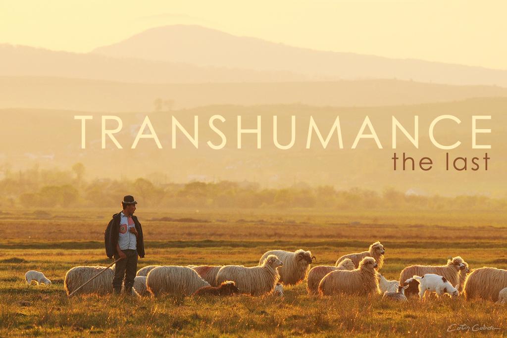 Documentary photo tour in rural Romania